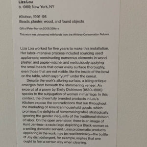 Lisa Lou, ID plaque at Whitney Museum, NY, NY